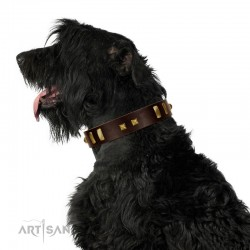 """""""Choco Delight"""" FDT Artisan Brown Leather Dog Collar with Old Bronze-like Plates and Studs"""