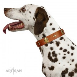 """Space Warrior"" FDT Artisan Tan Leather Dog Collar with Ovals and Stars"