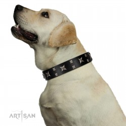 """Dreams in Stars"" Modern FDT Artisan Black Leather Dog Collar with Studs and Stars"