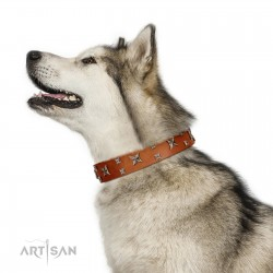 """""""Faraway Galaxy"""" FDT Artisan Tan Leather Dog Collar Adorned with Stars and Squares"""