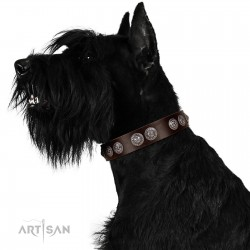 """""""High and Mighty"""" FDT Artisan Classy Brown Leather Dog Collar with Embellished Brooches"""