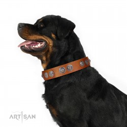 """""""Woofy Majesty"""" FDT Artisan Tan Leather Dog Collar with Round Silver-like Plates"""
