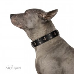 """Snappy Dresser"" FDT Artisan Black Leather Dog Collar Adorned with Stars and Tiny Squares"