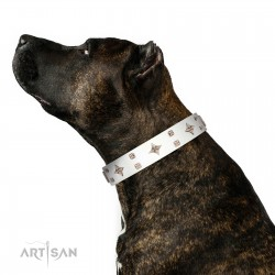 """The Milky Way"" FDT Artisan White Leather Dog Collar Adorned with Stars and Tiny Squares"