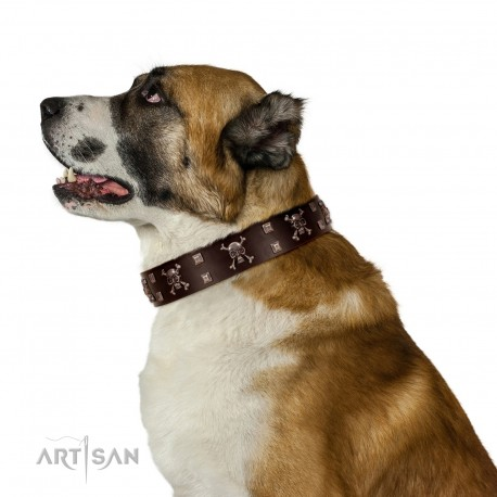 """Menacing Allure"" FDT Artisan Brown Leather Dog Collar Embellished with Silvery Crossbones and Square Studs"