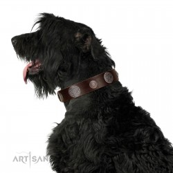 """""""Flashy Woof"""" FDT Artisan Brown Leather Dog Collar with Chrome Plated Brooches"""