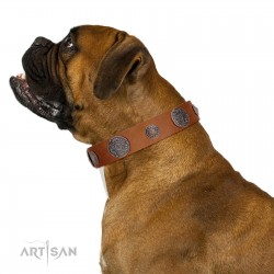 """""""Foxy Nature"""" FDT Artisan Tan Leather Dog Collar with Chrome Plated Brooches"""