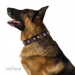 """""""Object of Virtu"""" FDT Artisan Brown Leather Dog Collar with Old Silver-like Square Studs and Pyramids"""