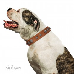 """Era Infinitum"" FDT Artisan Tan Leather Dog Collar Adorned with Chrome-plated Circles"