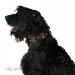 """""""Stars in Sands"""" Modern FDT Artisan Brown Leather Dog Collar with Studs and Stars"""