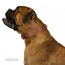 """""""Dreamy Gleam"""" FDT Artisan Tan Leather Dog Collar Adorned with Stars and Squares"""