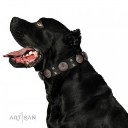 """""""Sun in Shining"""" Modern FDT Artisan Black Leather Dog Collar with Studs and Stars"""