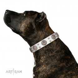 """""""Mighty Shields"""" FDT Artisan White Leather Dog Collar with Chrome Plated Shields and Square Studs"""
