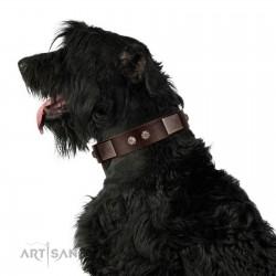 """Stone Stars"" Stylish Handmade FDT Artisan Brown Leather Dog Collar"