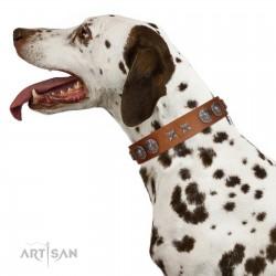 """Splendid Armor"" Premium Quality FDT Artisan Tan Designer Dog Collar with Shields and Stars"