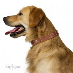 """Enchanted Skulls"" FDT Artisan Tan Leather Dog Collar with Chrome Plated Skulls"