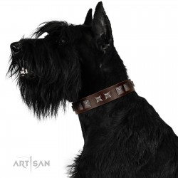 """""""Needle Stories"""" Modern FDT Artisan Brown Leather Dog Collar with Square Engraved Plates and Four-Point Stars"""