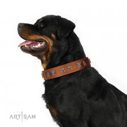 """""""Antique Figures"""" FDT Artisan Tan Leather Dog Collar with Silver-like Engraved Plates"""
