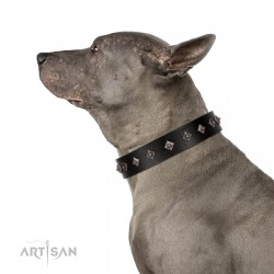"""Immense Power"" Handcrafted FDT Artisan Black Leather Dog Collar with Small Dotted Pyramids"