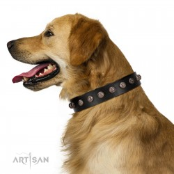 """Bizarre Affection"" Designer Handmade FDT Artisan Black Leather Dog Collar"