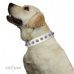 """Grandeur Dog"" FDT Artisan White Leather Dog Collar with Engraved Studs"
