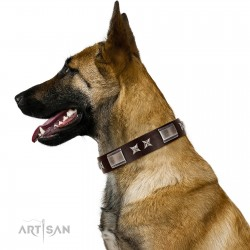 """""""Satin Beauts"""" FDT Artisan Brown Leather Dog Collar with Stars and Plates"""