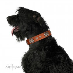 """""""Sweet Biscuit"""" FDT Artisan Tan Leather Dog Collar with Stars and Plates"""