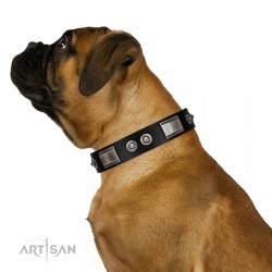 """""""Grand Wear"""" FDT Artisan Black Leather Dog Collar with Shining Plates and Spiked Studs"""