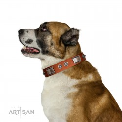 """""""Pawsy Glossy"""" FDT Artisan Exclusive Tan Leather Dog Collar 1 1/2 inch (40 mm) wide"""