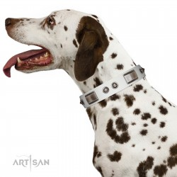 """Good-Luck Piece"" FDT Artisan White Dog Collar Adorned with Chrome Plated Stars and Plates"
